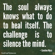 Quote: silence the mind